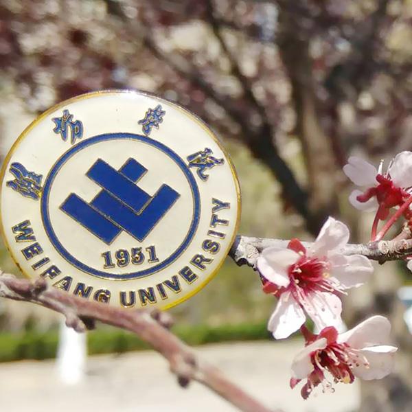 潍坊学院全景